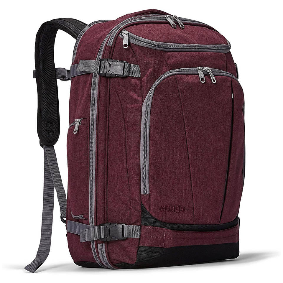 eBags Mother Lode Travel Backpack